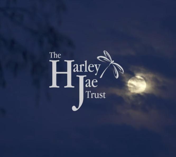 The Harley Jae Trust – Short Film